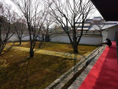 京の冬の旅 上京界隈の妙覚寺から西賀茂・上賀茂あたり