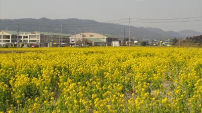 鎌倉・南房総の旅③