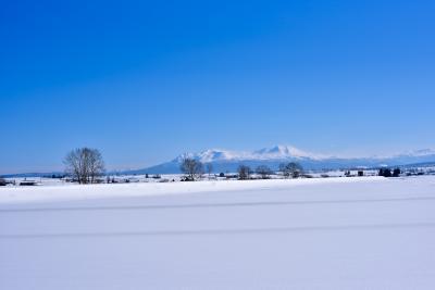 冬の美瑛の丘と札幌