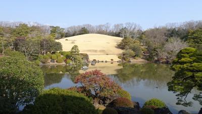 万博公園 梅まつり(02) 日本庭園 心字池の景観。