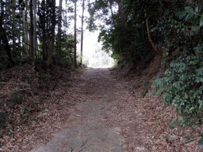 初瀬路古道11 サイクリング: 失われた「七見峠」探索と発見とその周辺
