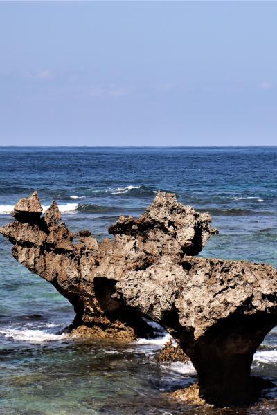 【沖縄本島・後編2】満喫度アップ!春を感じる風と一緒にドライブ
