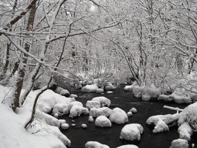 <青森雪見旅・4>まるで水墨画「真冬の奥入瀬&氷瀑ライトアップ」奥入瀬渓流ホテル