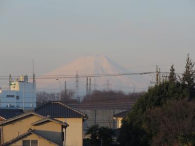 久しぶりに見られた素晴らしい富士山