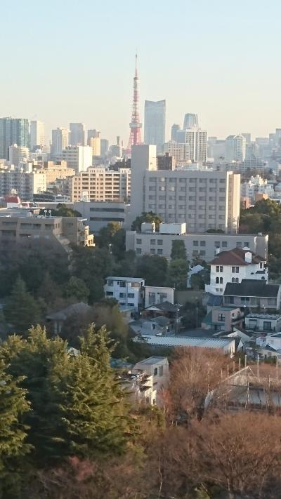 3月は東へ西へ!の東は東京へ その2