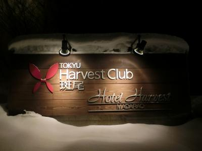 タングラム斑尾でスキー  その1  宿泊はリゾート内にある東急ハーヴェストクラブ斑尾です。