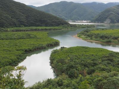 初めての奄美大島 その1