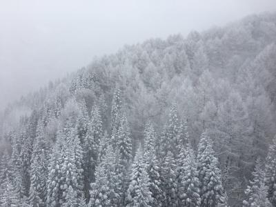 わざわざエンブラエルに乗って行く1泊2日山形 ①初日、吹雪で樹氷観賞どころではなかった蔵王とちょっとだけ山形市内散策
