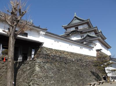 和歌山城(和歌山県和歌山市)へ行ってきました・・・