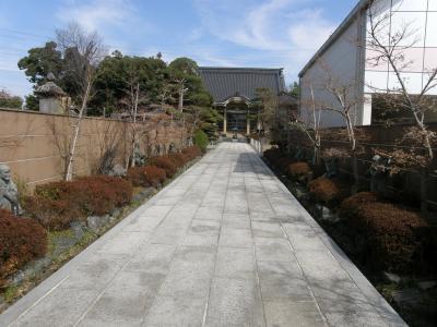 16体の石像が観られる鷲宮地区の霊樹寺に寄り帰宅
