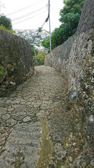 沖縄は半袖で充分な気候でした。