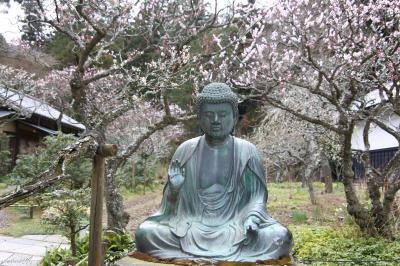 鎌倉花散歩(前半):東慶寺、浄智寺