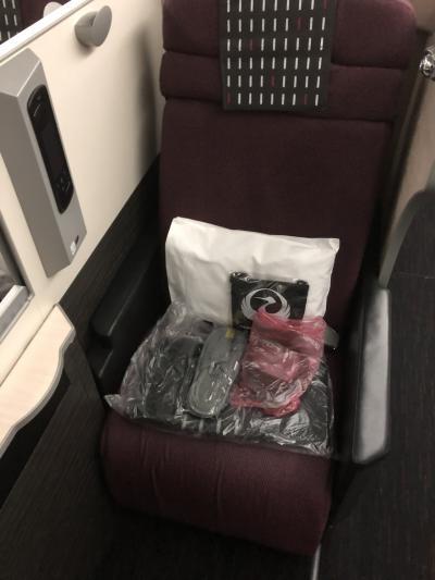 家族でハノイ、初日。往路JAL751便SKY SUITE 787搭乗記