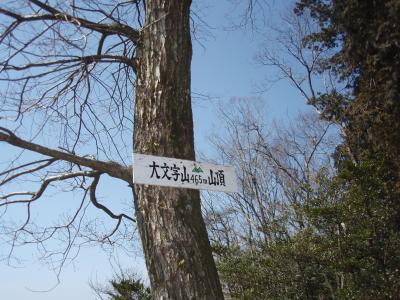 哲学の道、銀閣寺経由で大文字山(2)に登りました