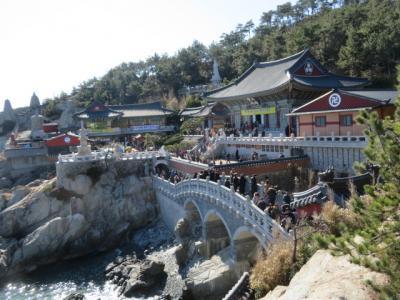 韓国 「行った所・見た所」 釜山の海東龍宮寺を参拝・散策