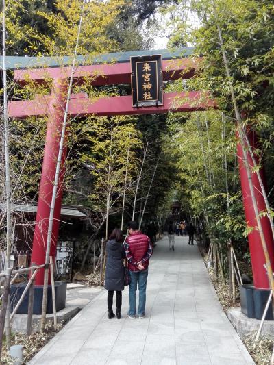 熱海梅園と来宮神社に行ってきました!