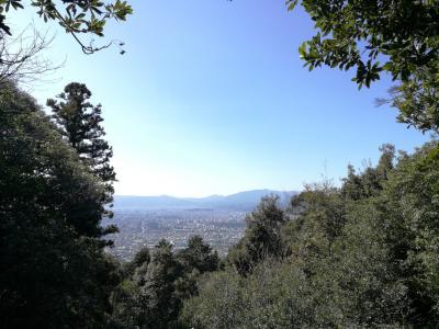 出張RUN 京都一周トレイルランニング 東山