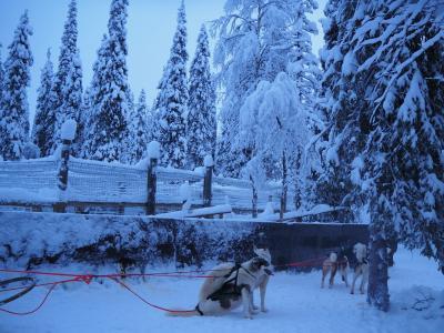 フィンランド、ちょっとルカまでオーロラでも。なはずな旅2