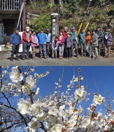 ハイキング倶楽部第44回 顔振峠~越生梅林 Hiking to Kaaburi-Pass,Ogose plum garden