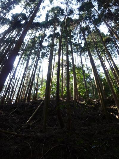 霊的パワーを感じる京都旅行①