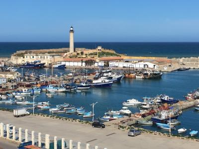 早春のアルジェリアへ① アルジェ近郊からスタート!
