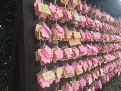 女子力アップの櫻木神社🌸さくらの日  御朱印&うわさのサンドイッチ屋さん