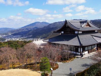 青蓮院門跡と祇園あたり  春の京都をふらふら歩く。前篇