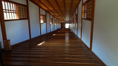 和歌山観光(18) 和歌山城公園 上巻。