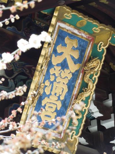 2018年3月 京都に春が来てます(梅)⑤ 北野天満宮と下賀茂神社と早咲きの桜編