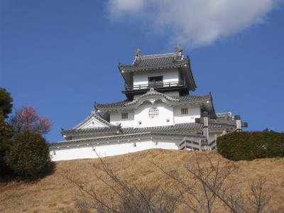 【日本百名城】海鮮丼が食べたくて(掛川城)