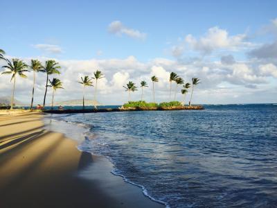 ANAビジネスクラスで行くハワイ10泊の旅 7日目&8日目
