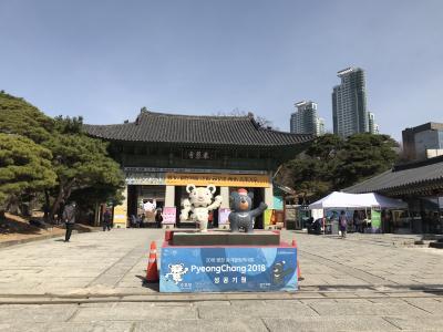 ソウル週末弾丸一人旅 -アロフト江南ホテル-