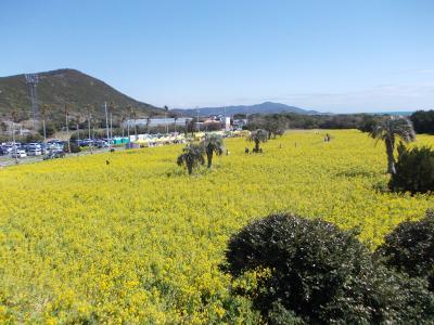 2018年春の家族で温泉旅行 ~弁天島、伊良湖、豊橋~