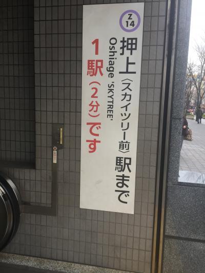 東京散歩*錦糸町北口からのスカイツリーのある風景🌸桜はまだ?