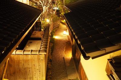 今回のターゲットは祇園・東山!2018春の京都旅〈2〉揺れる火影☆東山花灯路
