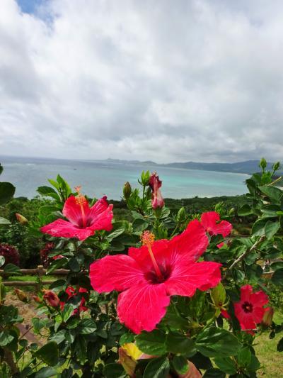 石垣島の碧い風