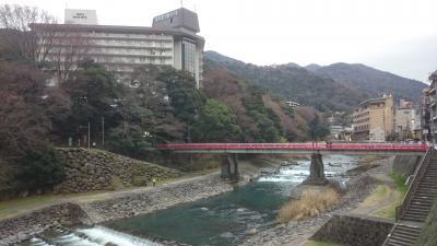 神奈川県 小田原に用事ついでで箱根旅行 (4-3) 箱根湯本駅前の温泉街