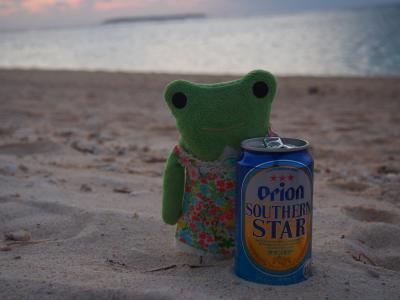 うりずんの沖縄へ2週間の1人旅 4