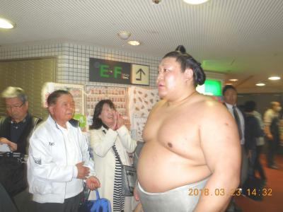大相撲3月場所(大阪場所)に行ってきました。       2018年3月23日(金) 13日目