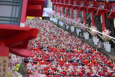 街はひな人形一色、かつうらビックひな祭り
