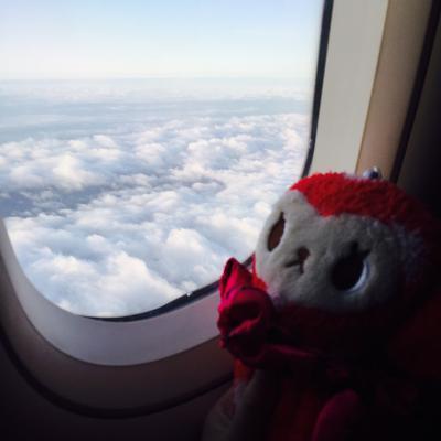 香港航空で行く香港マカオ3泊4日★1dayまさかの珠海編