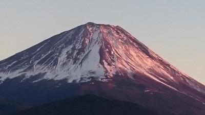 初めてのお正月家族旅行で、皇居一般参賀と精進湖の富士山