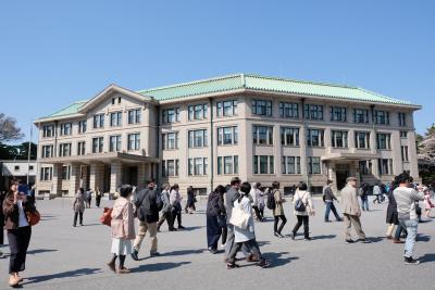 皇居乾通りの桜と東京の満開の桜