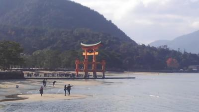 シニアトラベラー!1泊2日宮島・岩国・広島満喫の旅!