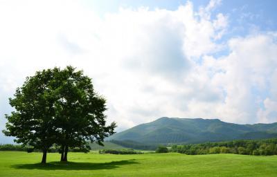 [十勝をぐるり]花と自然と畑の恵みを楽しむ旅(7)~おもしろかったセグウェイツアー〈草原コース〉@十勝千年の森