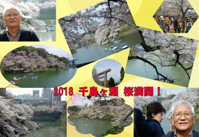 桜追っかけ2018(皇居乾門通り→千鳥ヶ淵)