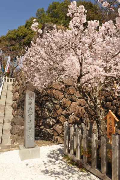 2018年3月:日本100名城の武田氏館跡