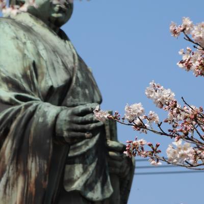 【鎌倉散歩】アラカン女子、カメラ女子フォトレッスンに参加する