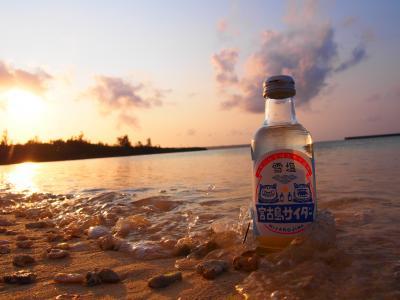 うりずんの沖縄へ2週間の1人旅 14