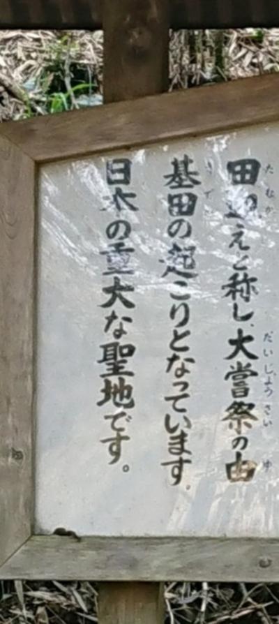 意を決して 熊本 幣立神宮